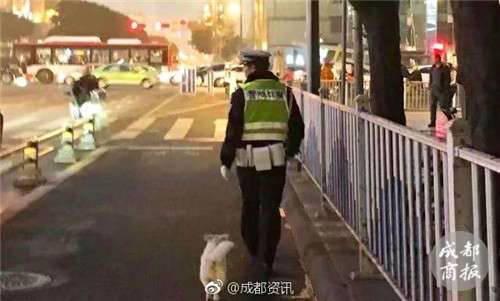 流浪小狗求助辅警 网友:被交警小哥的背影暖哭了!