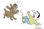 黄子韬被爱犬咬伤怎么回事 被宠物狗咬伤怎么处理?