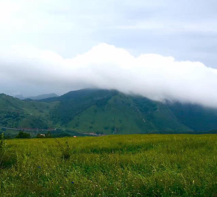 为什么灵山景区暂停开放 灵山景区到底发生了什么?