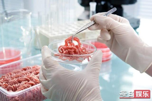 中国人造肉将上市是什么情况 人造肉究竟有什么好处?