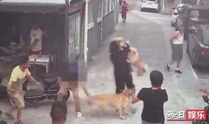 纵狗咬人被刑拘是怎么回事 宠物如果伤人主人该负责吗?