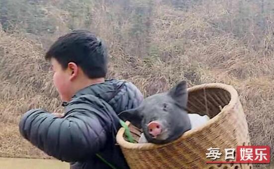 变形计杜华儿子背猪哪一期